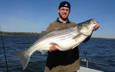 Lake Texoma Striper Fishing Report Summer 2017