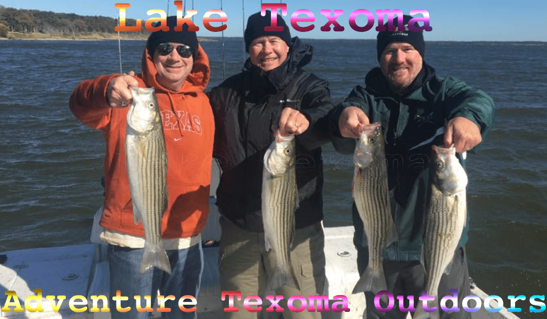 Lake Texoma Striper Report
